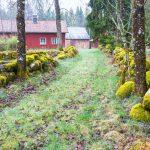 Lej et idyllisk og billigt sommerhus i Sverige