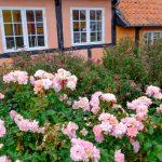 Herlige ferieoplevelser i sommerhus Bornholm